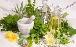 Birbirinden şifalı bitkiler ve faydaları