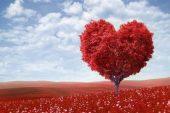En güzel rivayet: Sevgi günü… Sevgililer günü…